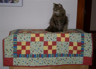 Kaya on the baby quilt