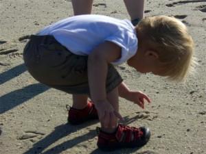 Josie exploring a crab on the beach