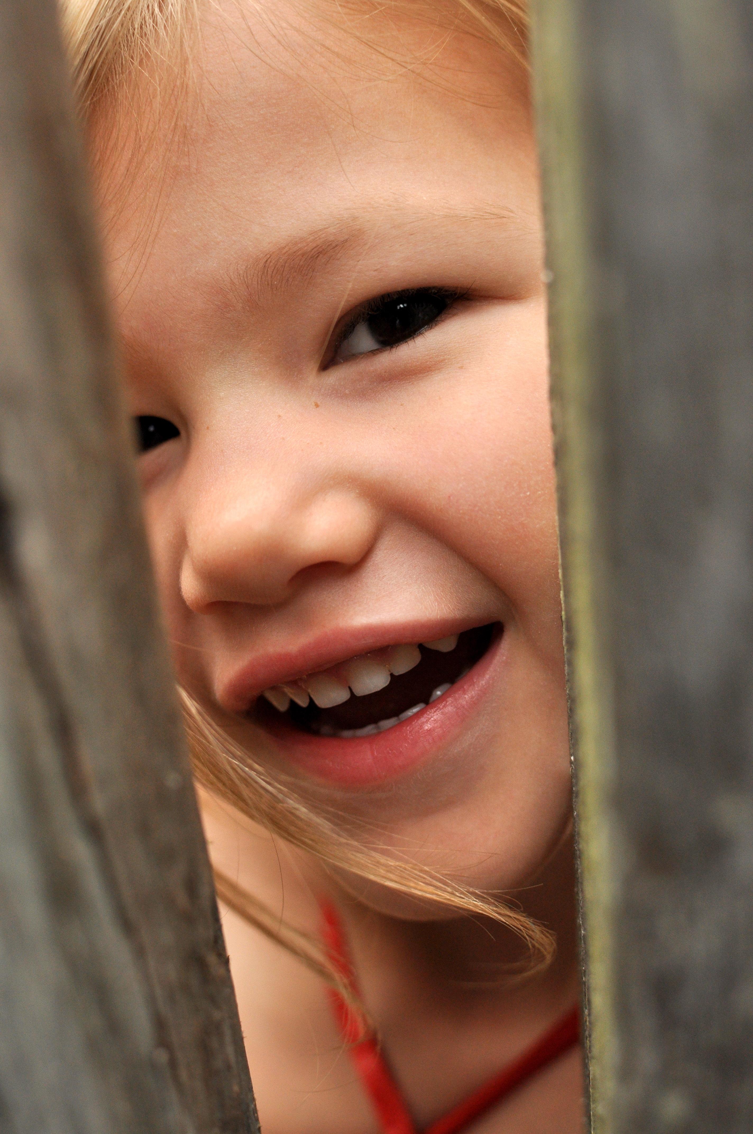 Josie peeking through the gate