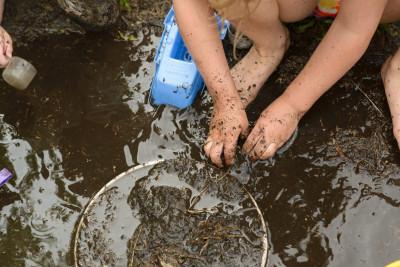 Josie digging in the mud