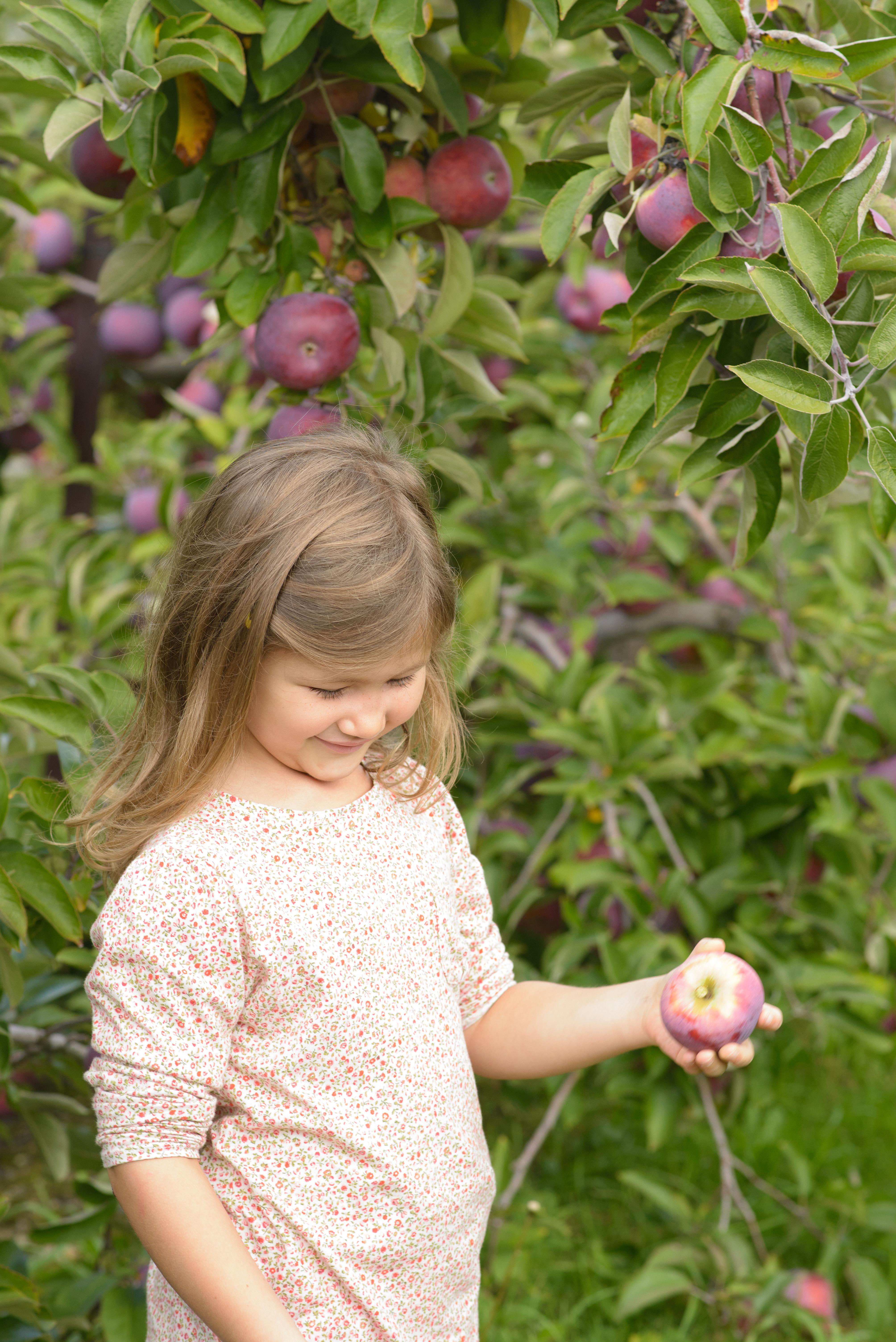 Josie picking an apple