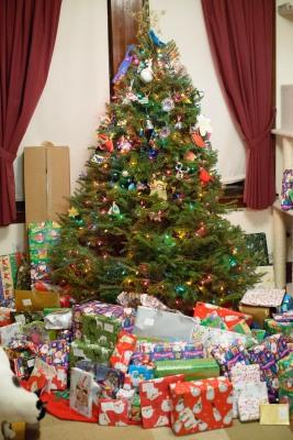 The tree Christmas 2014
