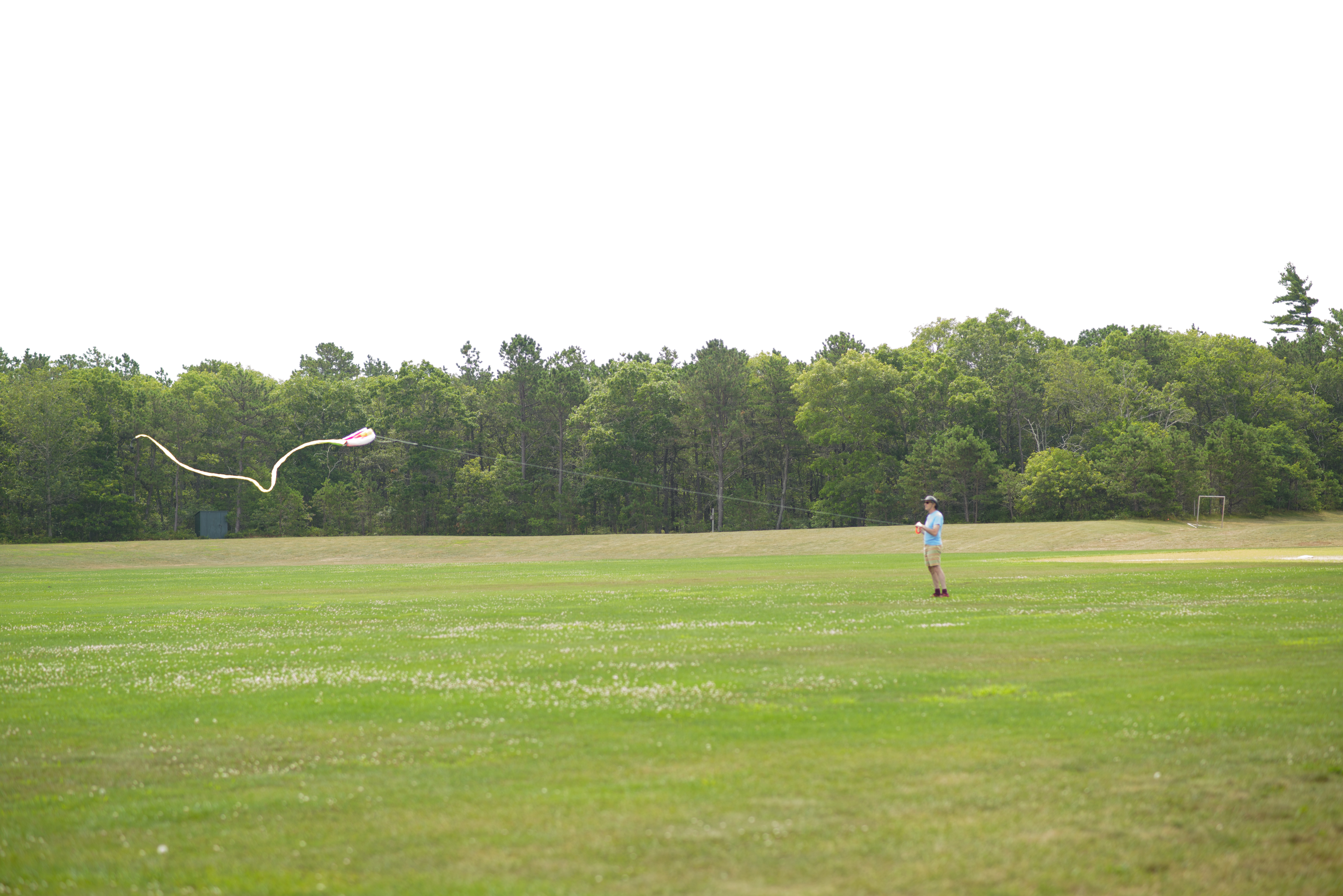 Dad flying his kite